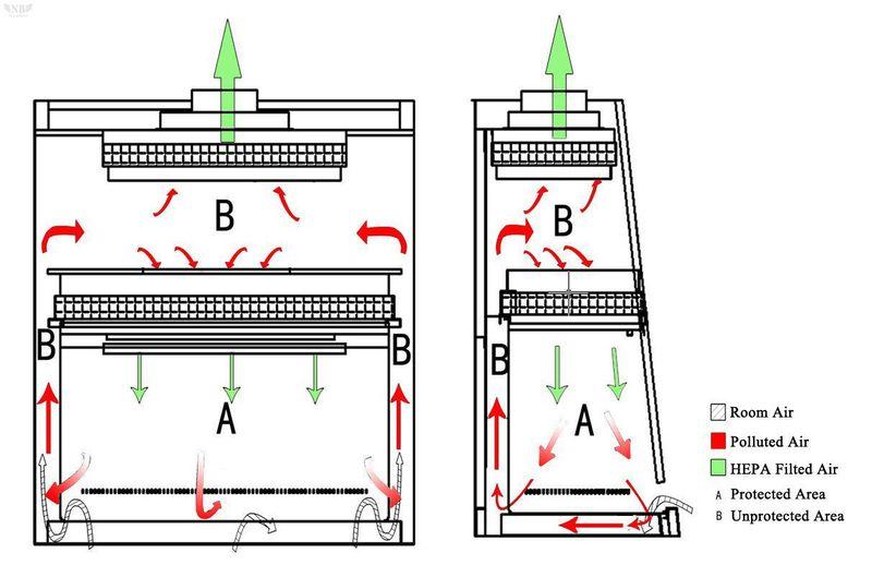 Dòng khí tủ an toàn sinh học cấp II
