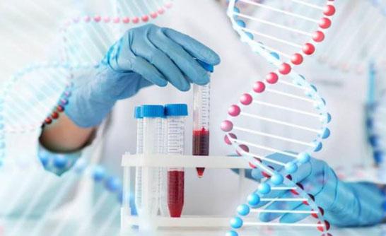 Xét nghiệm sinh học phân tử
